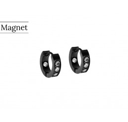 magnet_reringe_02-_31-05_1[1]